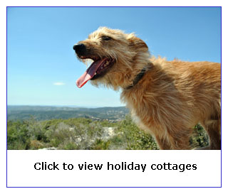 Yorkshire cottages dogs welcome