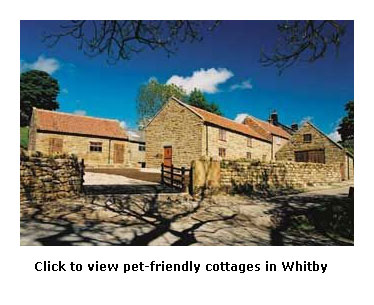 popular pet friendly cottages in whitby